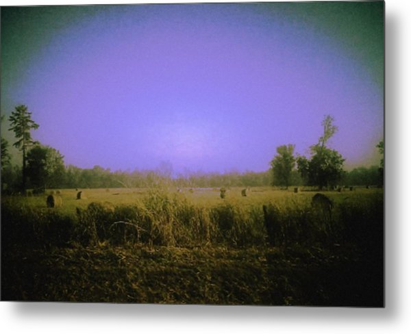 Louisiana Pastoria Metal Print