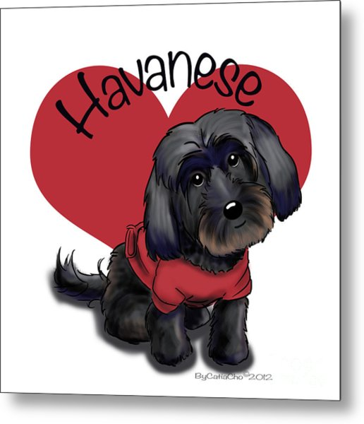 Lovable Black Havanese Metal Print