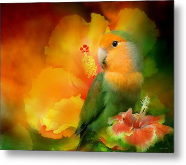 Love Among The Hibiscus Metal Print