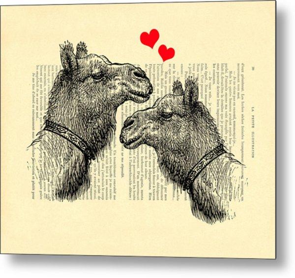 Love Camels Metal Print
