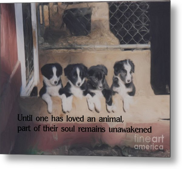 Love For Animals Metal Print