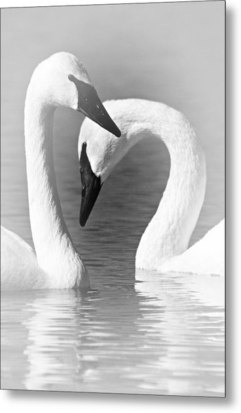 Love In Black And White Metal Print