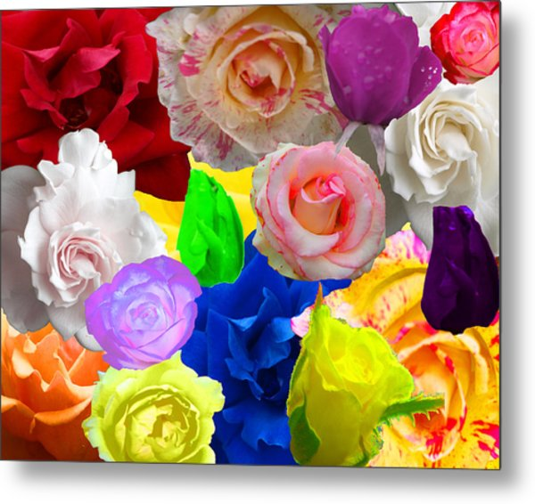 Love In Roses Metal Print by Kim