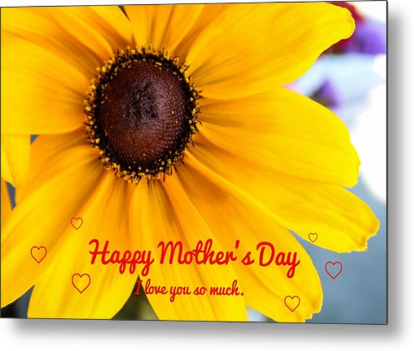 Metal Print featuring the photograph Love You Mama by Alison Frank