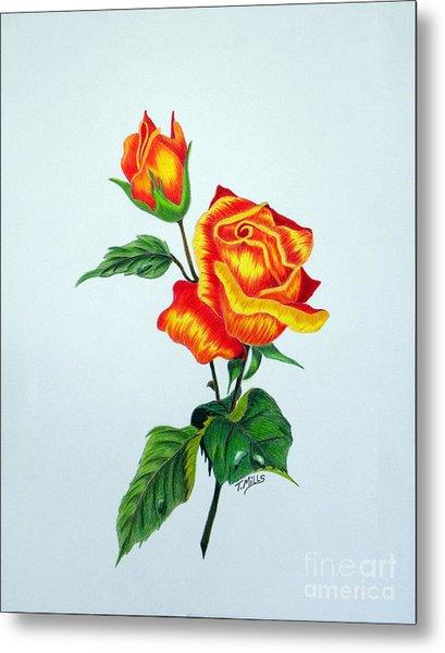 Lovely Rose Metal Print