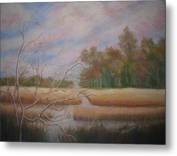 Low Country Metal Print by Shirley Braithwaite Hunt