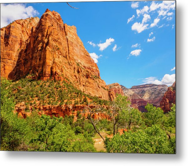 Metal Print featuring the photograph Lower Emerald Pool Trail - Zion National Park by Penny Lisowski