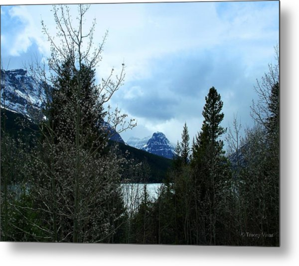 Lower Two Med Lake Through The Trees Metal Print