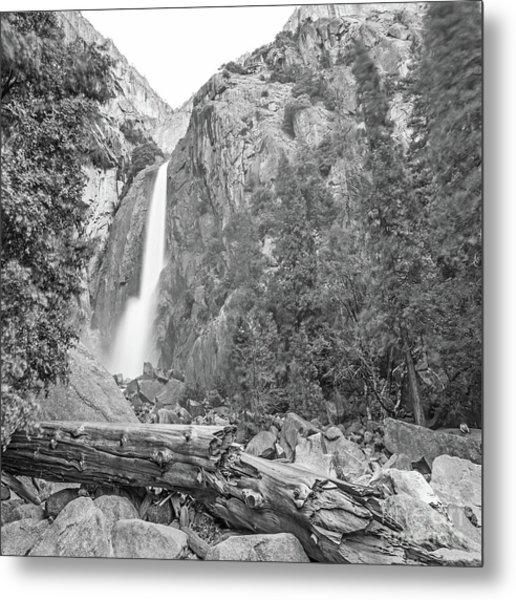 Lower Yosemite Falls In Black And White By Michael Tidwell Metal Print