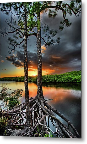 Loxachatchee Sunset Metal Print