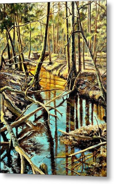 Lubianka-3-river Metal Print