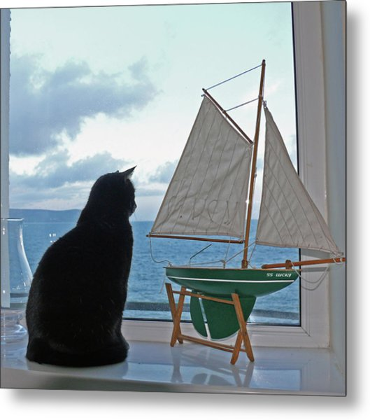 Lucky The Sleepycat Metal Print