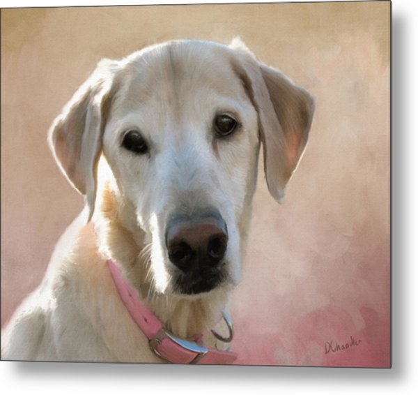 Lucy In Pink Metal Print
