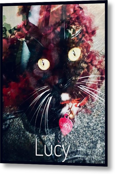 Lucy The Cat Metal Print