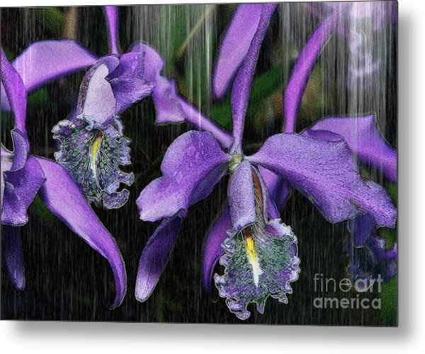 Luminessence Metal Print