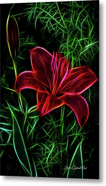 Luminous Lily Metal Print