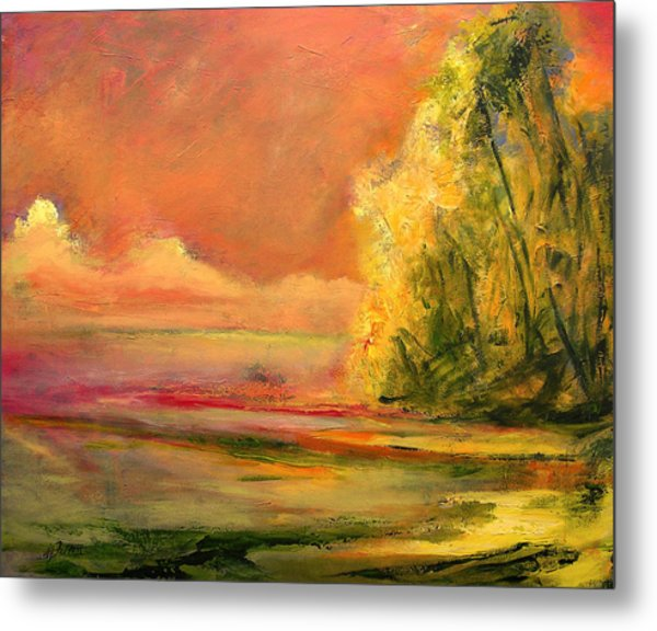 Luminous Sunset 2-16-06 Julianne Felton Metal Print