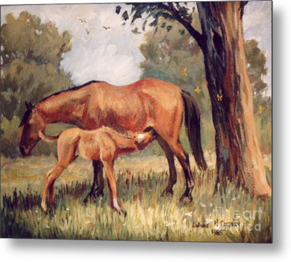 Lunchtime   Mare And Foal Metal Print