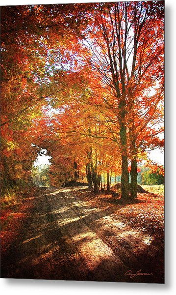 Lupton Road Metal Print