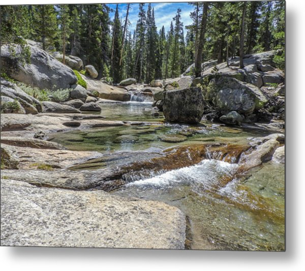 Lyell Fork Tuolomne River Yosemite National Park Metal Print