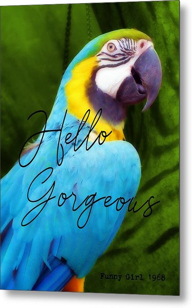 Macaw Quote Metal Print by JAMART Photography