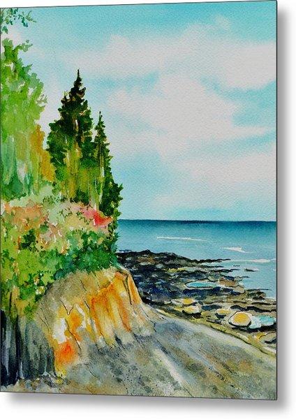 Mackworth Island Maine  Metal Print