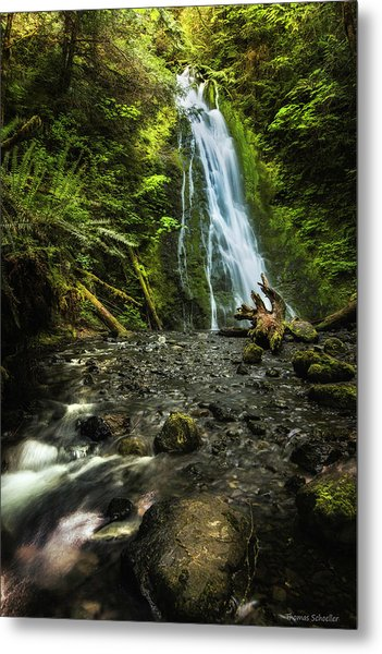 Metal Print featuring the photograph Madison Falls - An Elwha Sanctuary by Expressive Landscapes Fine Art Photography by Thom