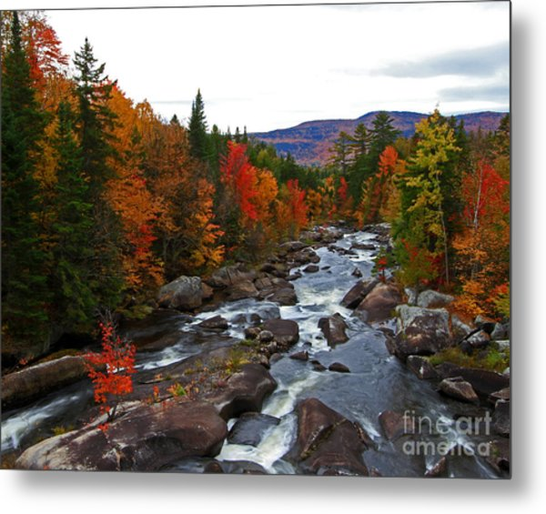 Magalloway River In Fall Metal Print