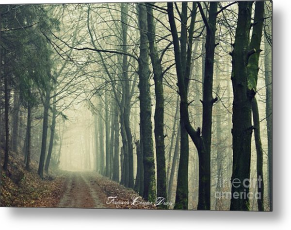 Magic Forrest Metal Print by Sacred  Muse