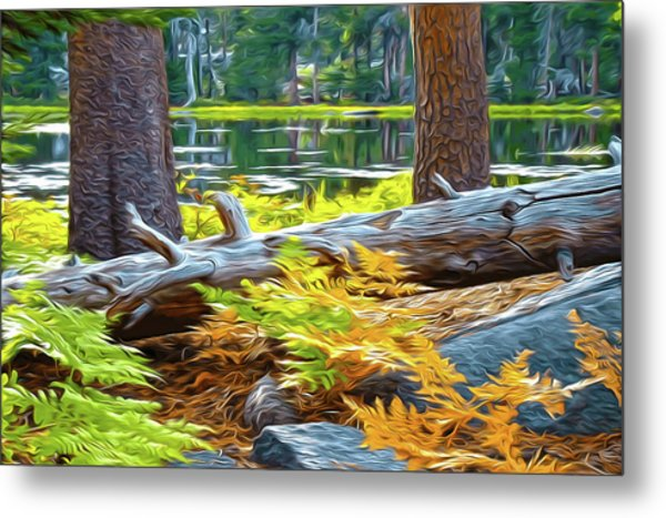 Magic Light Lake Metal Print
