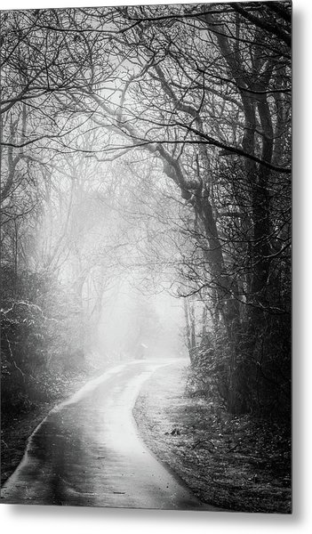 Magical Light Of Dawn Metal Print