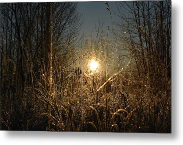 Magical Sunrise Metal Print