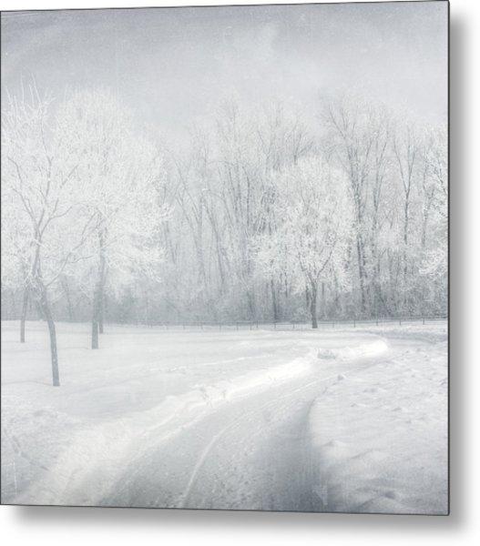 magical Winter day Metal Print