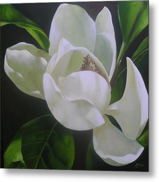 Magnolia Light Metal Print