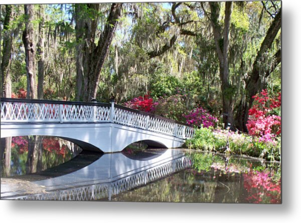 Magnolia Plantation Series 1 Metal Print by Melanie Snipes