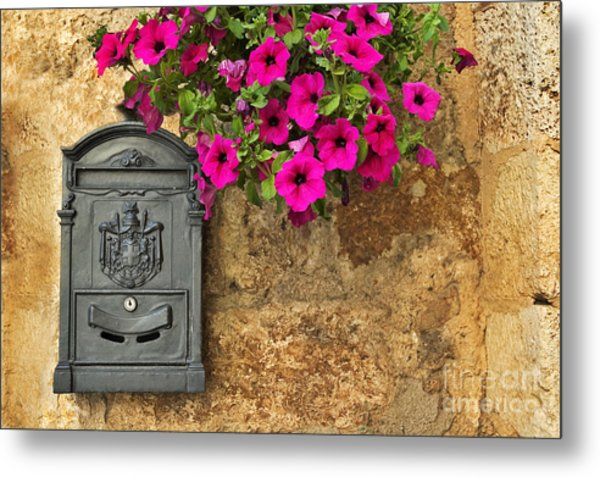 Mailbox With Petunias Metal Print