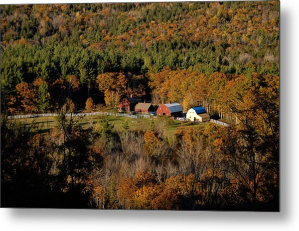 Maine Fall Colors Metal Print by Gary Cloud