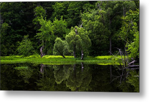 Maine Reflections Metal Print