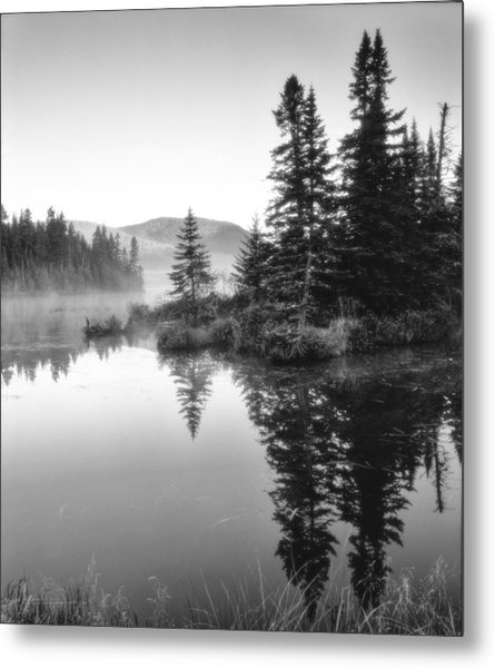 Metal Print featuring the photograph Maine Solitude by Michael Hubley
