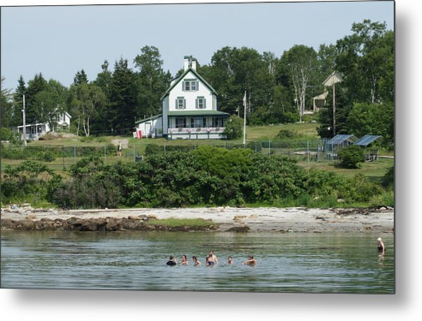 Maine Summer Metal Print by Lois Lepisto