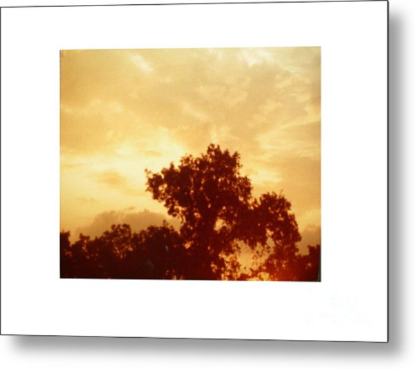 Majestic Sky Metal Print by Hal Newhouser