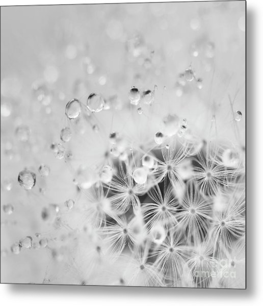 Make A Wish For The Day Metal Print