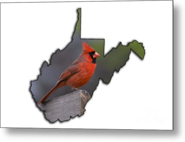 Male Cardinal Perched On Rail Metal Print