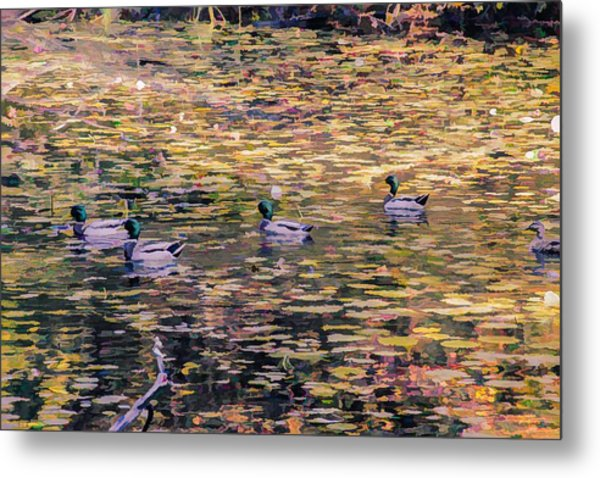 Mallards On Autumn Pond Metal Print