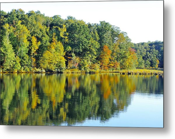 Mallows Bay Metal Print
