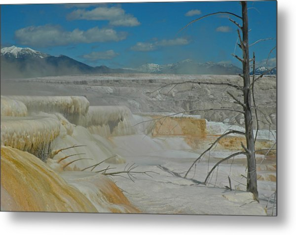 Mammoth Hot Springs Terrace In Yellowstone National Park Metal Print
