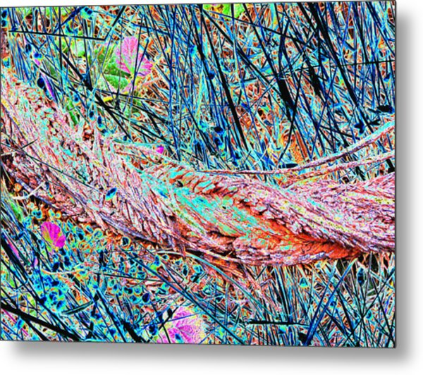 Man And Nature Abstracted Metal Print