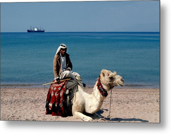 Man With Camel At Red Sea Metal Print