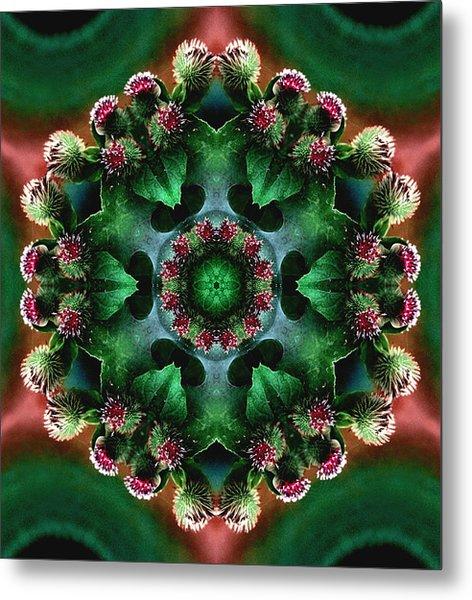 Mandala Bull Thistle Metal Print