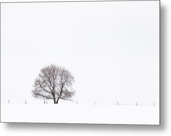 Manitoba Winter Metal Print